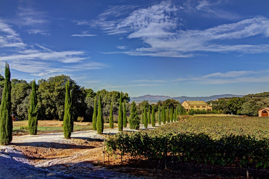 Venue from vineyards
